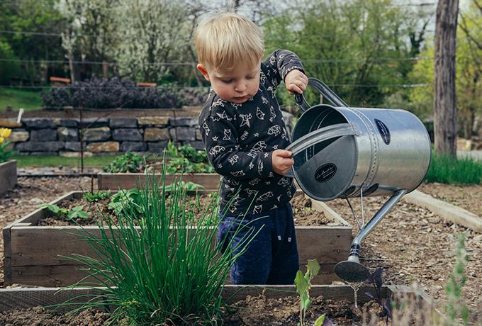 Concrete Britain: Do you actually DESERVE a garden?